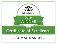 Certificate of Excellence Winner 2019 Cemal Ranch